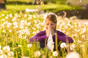 allergies-field-140523
